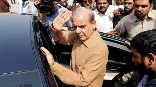 Shahbaz Sharif's interim bail
